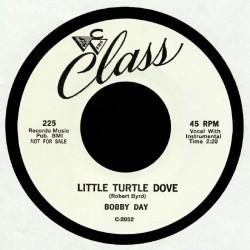 Little Turtle Dove