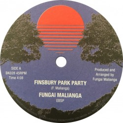 Finsbury Park Party