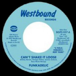 Can't Shake It Loose