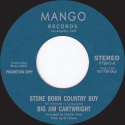 Stone Born Country Boy