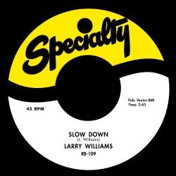 Slow Down / Dizzy Miss Lizzy